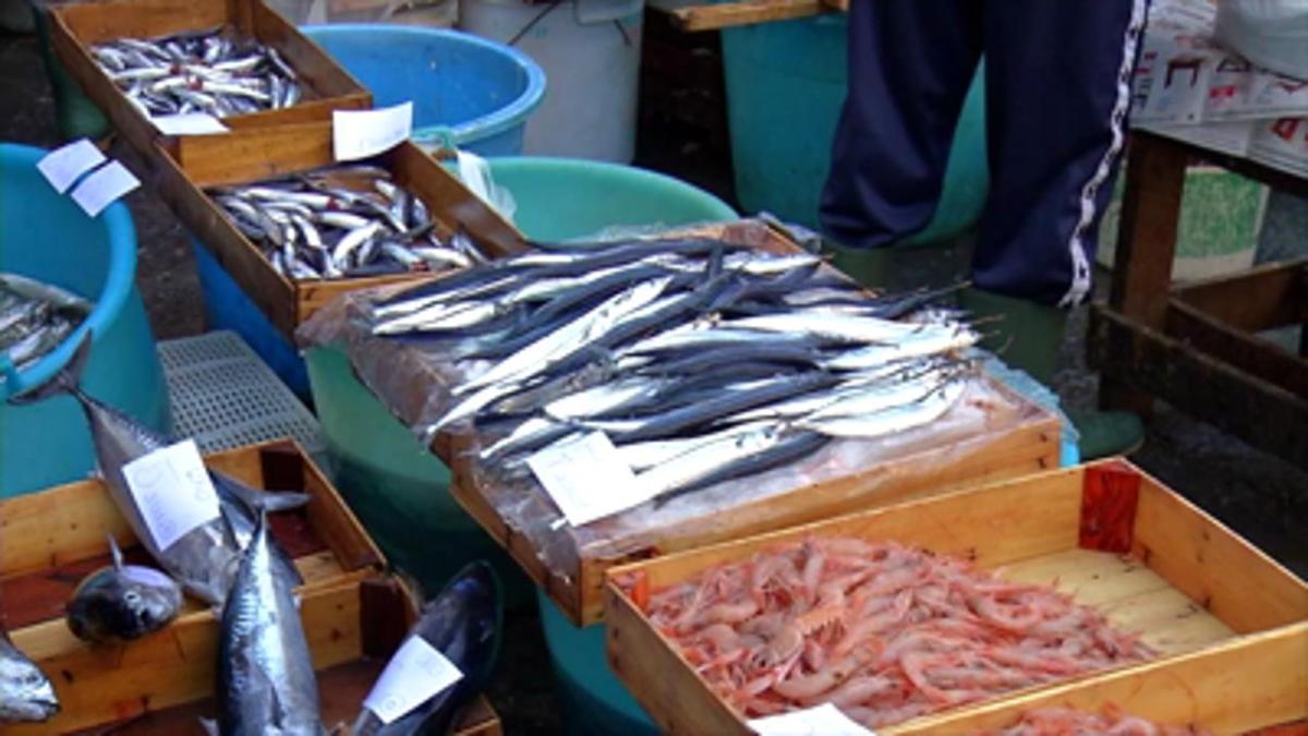 Back to the Italian Fish Market