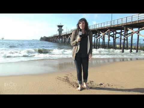 The Beach Los Angeles