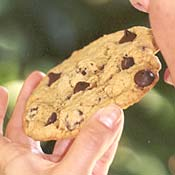 Giant Chocolate Chip Cookies Recipe