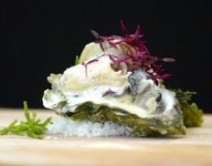 Poached Oyster and Cauliflower Mousseline