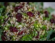 Dr. Ruby's Sprouted Cranberry Quinoa