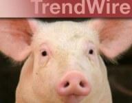 TrendWire, April 2012