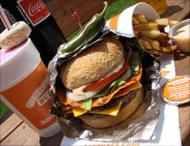 Burguesa Burger TN