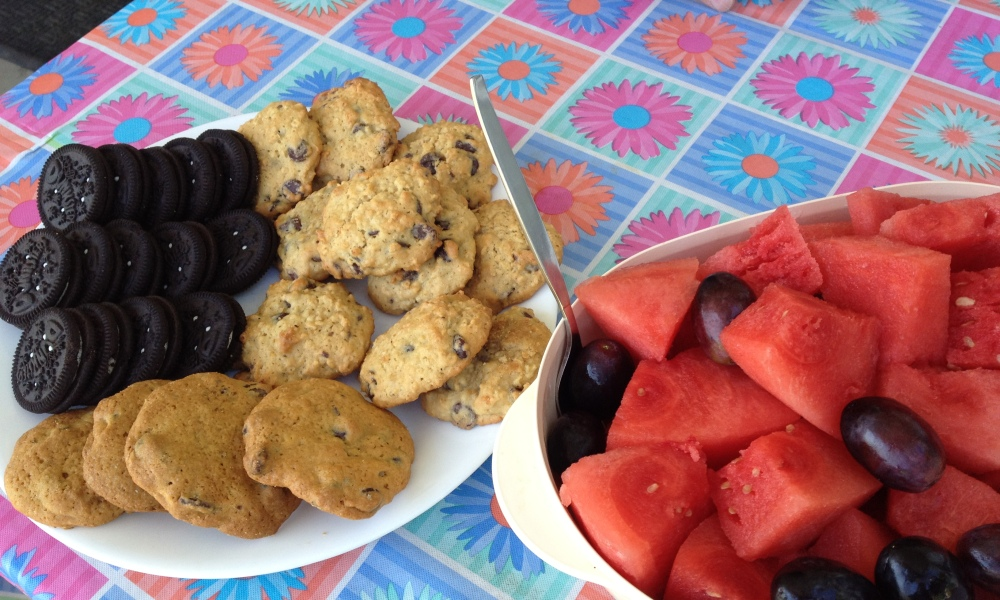 Watermelon and Cookies, fresh from the farm!