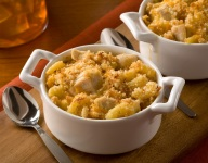 Four Cheese Turkey Mac and Cheese