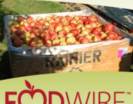 FoodWire, October 2012