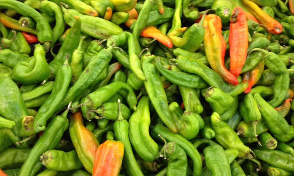 A bin of Hatch Chiles, ready to roast