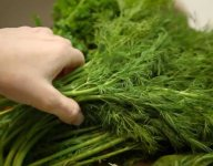 How to Chop and Store Fresh Herbs