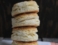 Dining Out: The Big Biscuit in Kansas City