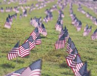 Ways To Honor The Fallen This Memorial Day