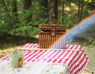 Recipes For The Ultimate Picnic