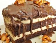 Chocolate Peanut Butter Bloom Cake