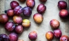 Plums are a dandy fruit that are native to not one but a number of ports, including China, America, Europe and Caukasus, which is good because it offers so many health benefits that its good to know it can be appreciated all over the world!