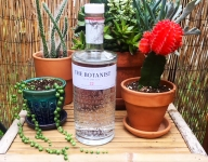 Food Channel Finds: The Botanist Dry Gin
