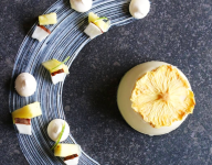 Pineapple and Coconut Panna Cotta