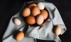Is there a difference between eggs with brown and white shells? The answer is no. Brown eggs may be fresher because they typically come from local farmers. Otherwise there's no real difference in taste.