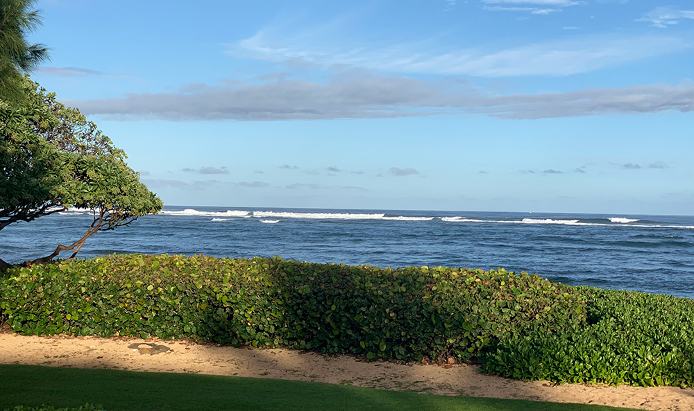 Oasis on the Beach is one of the first farm-to-table restaurants on the island of Kauai, Hawaii, with a beautiful oceanfront location and accommodations for those who want a resort-like stay.